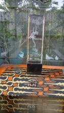 Trophy Crystal 26