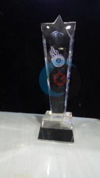 Trophy Crystal 17