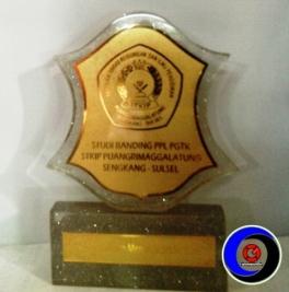 Trophy Fiberglass 4